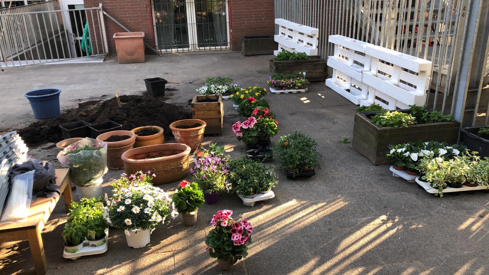 Gartentag 2021 / 3